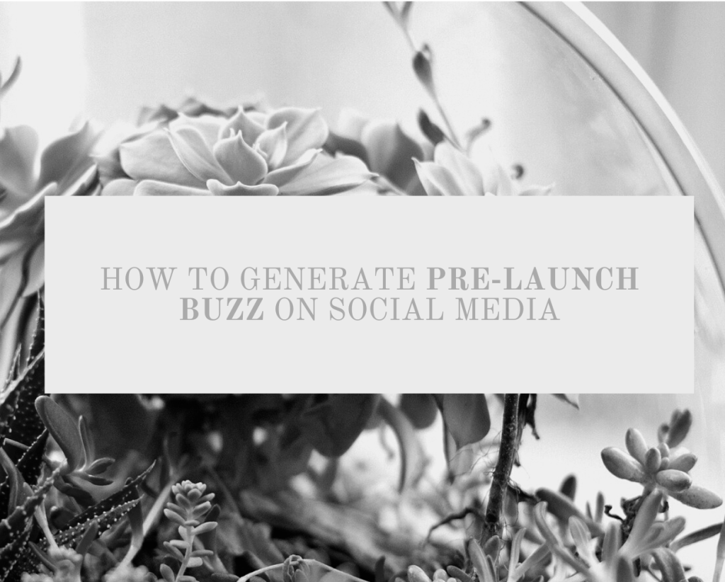 It's probably rob - how to generate prelaunch buzz on social media cover photo. Succulents in the background.